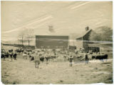 Farm scene, circa 1900, Morris County, NJ