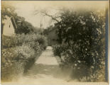 South Street, house #126, garden, circa 1900, Morristown, NJ