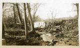Leddell's pond and dam, Tempe Wick Rd., not dated, Mendham, NJ