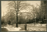 South Street after snow storm, circa 1900, Morristown, NJ