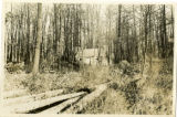 Jockey Hollow, soldier's hut, ca. 1930, Morristown, NJ