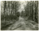 Jockey Hollow Road, 11/10/1929, Morris County, NJ