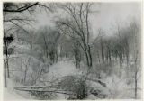 Whippany River in winter, 1/25/1919, Morristown, NJ
