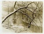 Snow scene, 2/4/1913, Morris County, NJ