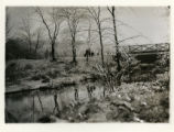 Burnham Park, trees covered with ice with stream and bridge, 12/27/1926, Morristown, NJ