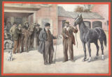 Print, color,Horse Trading