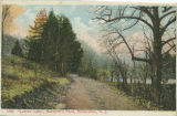 Lover's Lane, Burnham Pond, early 20th century, post 1907, Morristown, NJ