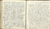 Pages 111-112, Civil War Diary of Confederate soldier George D. Wise, March 5, 1865
