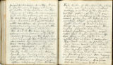 Pages 113-114, Civil War Diary of Confederate soldier George D. Wise, March 5, 1865